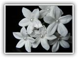stephanotis with pearls