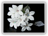 stephanotis with crystals